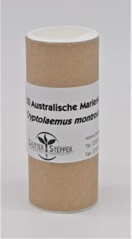 Australische Marienkäfer 50 Stück (Cryptolaemus)