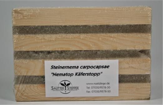 Käferfalle für Dickmaulrüssler - Nematop Käferstopp
